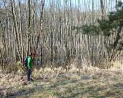 Geocaching im Naturschutzgebiet Pumpe Moore in Eberswalde